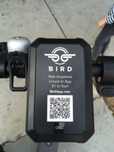 Bird_アプリ起動