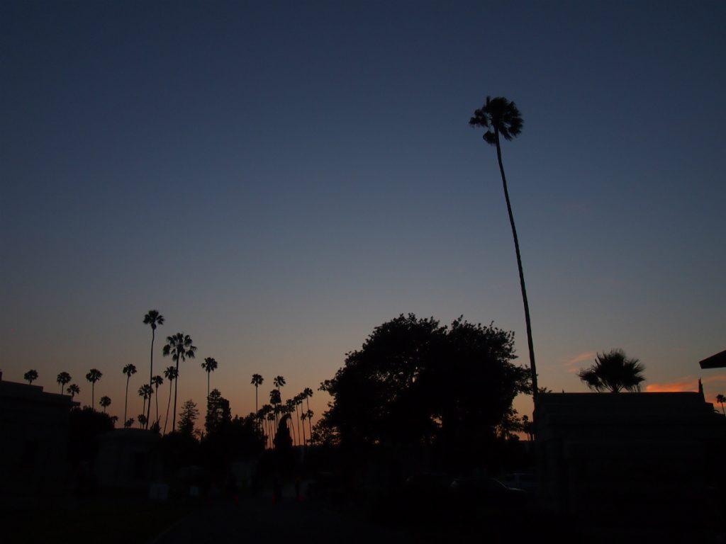cinespia sunset